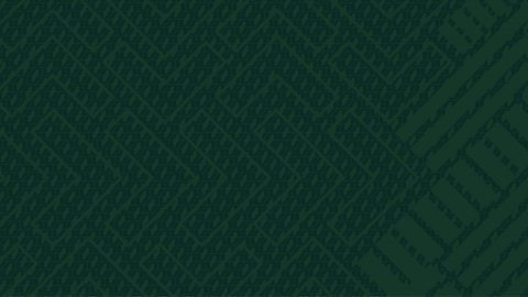 Av dna wallpaper green 3440x1440