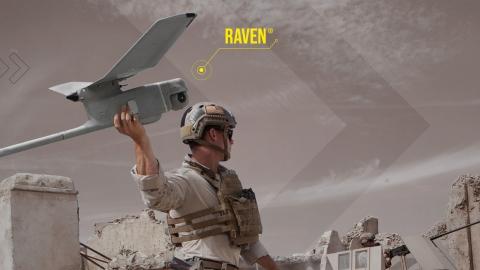 Computer wallpaper raven 3440x1440
